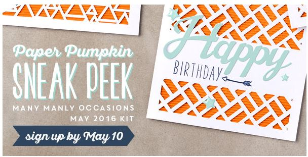 many manly occasions May 2016 paper pumpkin kit, sneak peek, #creativeleeyours, Stampin' Up!, card kits, masculine