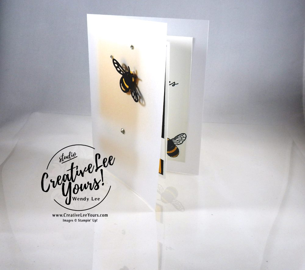 Special daybumble bee by Wendy Lee, Stampin Up, #creativeleeyours,creatively yours, dragonfly dreams stamp set,detailed dragonfly thinlits, hand made card, diemonds team meeting