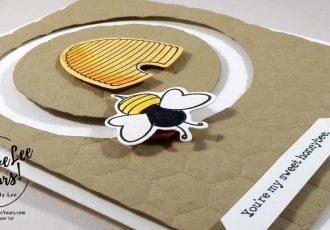 Sweet Honeybee by Jenn GD, Stampin Up, #creativeleeyours, creatively yours, diemonds team meeting, shooting star stamp set, sliding star framelits, spinner card