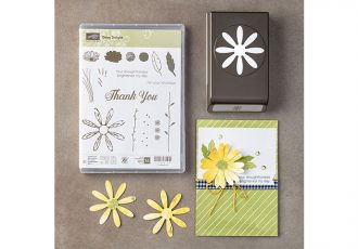daisy delight bundle, stampin up, #creativeleeyours, wendy lee, rubber stamps