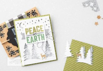 Carols of Christmas Bundle with Wendy Lee, Stampin Up, Carols of Christmas stamp set, card front bulider thinlits,stamping,hand made, holiday cards and gifts, stamping, #creativeleeyours, creatively yours,holiday crafts