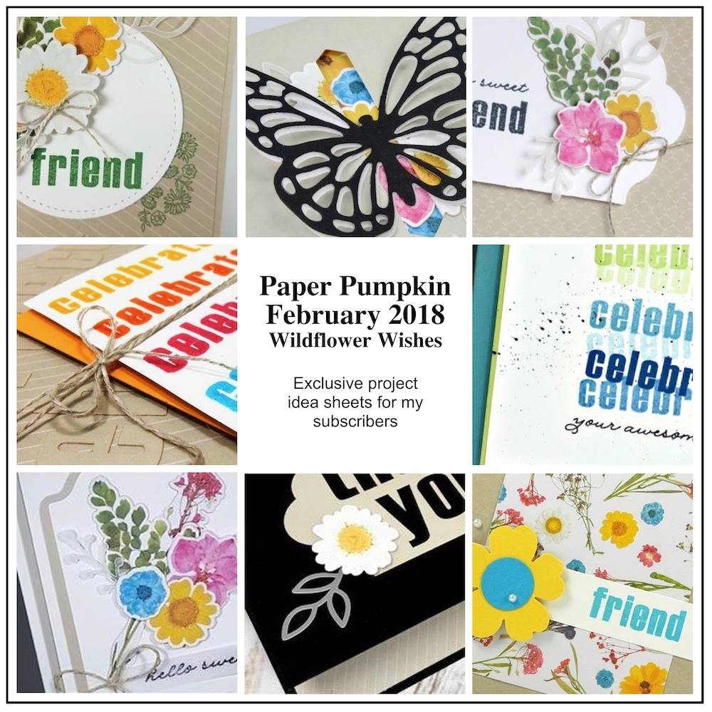February 2018 wildflower wishes Paper Pumpkin Kit by wendy lee, stampin up, handmade cards, rubber stamps, stamping, kit, subscription, floral,spring cards, thank you, congrats, friend, #creativeleeyours,creatively yours,creative-lee yours,SU, SU cards