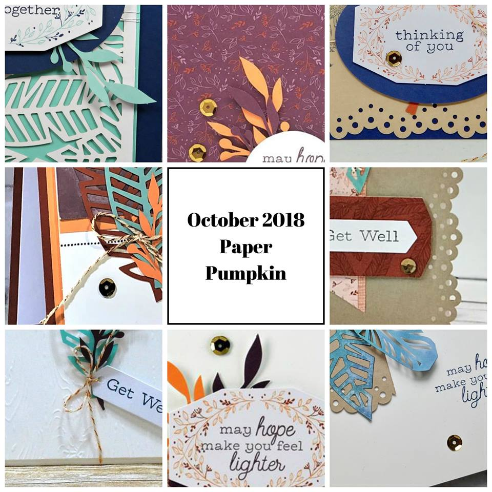 October 2018 Friends Of A Feather Paper Pumpkin Kit by wendy lee, stampin up, handmade cards, rubber stamps, stamping, kit, subscription, #creativeleeyours, creatively yours, creative-lee yours, birthday, friend, thank you, congrats, video, bonus tutorial, alternate projects, fun kids projects, fast & easy, DIY, feathers,#simplestamping