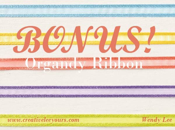 2019 Occasions catalog, designer paper share, ribbon share, Wendy Lee, stampin up, papercrafting, #creativeleeyours, creativelyyours, creative-lee yous, SU, #loveitchopit