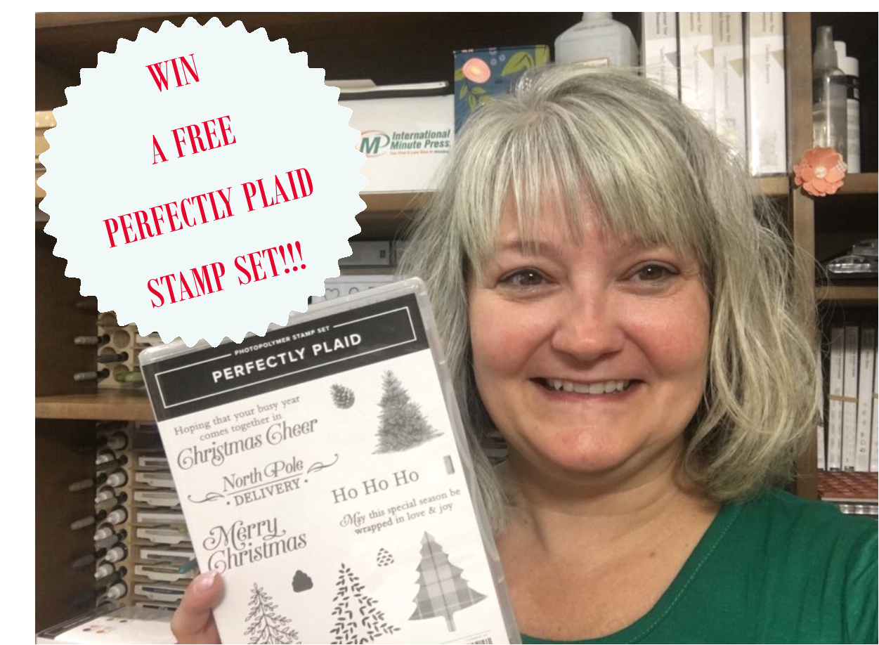 Blue Ridge Holiday Stampin' Escape, retreat, class, getaway, holiday, stamping, SU, patternpaper, creativeleeyours, creative-lee yours, creatively yours, DIY, handmade, rubber stamps, perfect plaid stamp set, giveaway, blog candy, prize