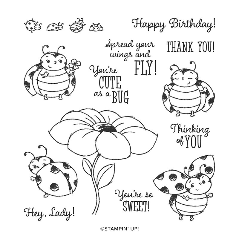 Little Lady Bug by Wendy Lee, stampin Up, SU, #creativeleeyours, handmade card, little lady bug stamp set, friend, celebration, stamping, thank you, creatively yours, creative-lee yours, DIY, birthday, SAB, paper crafts, Sale-a-bration, host set