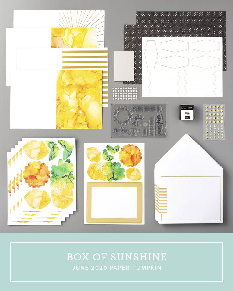 Wendy Lee, June 2020 Paper Pumpkin Kit, stampin up, handmade cards, rubber stamps, stamping, kit, subscription, #creativeleeyours, creatively yours, creative-lee yours, celebration, smile, thank you, birthday, sorry, thinking of you, love, congrats, lucky, feel better, sympathy, get well, mom, dad, brother, sister, family, alternate, box of sunshine, bonus tutorial, fast & easy, DIY, #simplestamping, card kit, subscription, craft kit, #sharesunshine