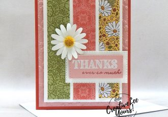 Thanks Ever So Much by Natalie Benham, Wendy Lee, stampin Up, SU, #creativeleeyours, handmade card, ornate thanks stamp set, daisy delight stamp set, friend, celebration, wedding, stamping, creatively yours, creative-lee yours, DIY, birthday, papercrafts, business opportunity, #makeacardsendacard ,#makeacardchangealife , #diemondsteam ,#diemondsteamswap ,#businessopportunity, flowers, stitched rectangle dies, emboss, rubberstamps, #loveitchopit, pattern paper