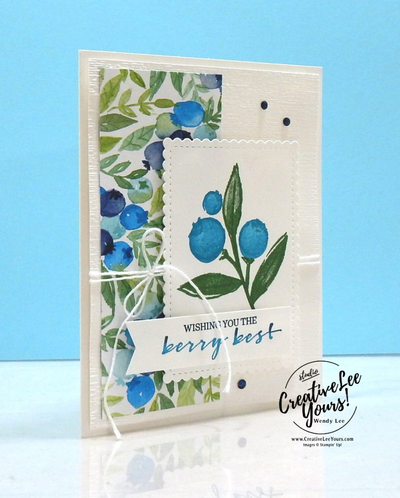 Berry Best by Wendy Lee, stampin Up, SU, #creativeleeyours, handmade card, friend, celebration , birthday, stamping, creatively yours, creative-lee yours, DIY, papercrafts, rubberstamps, #stampinupdemonstrator , #papercrafts , #papercraft , #papercrafting , #papercraftingsupplies, #papercraftingisfun, Berry Blessings stamp set, #tutorial #SAB, #saleabration, pattern paper
