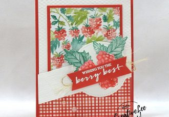 Baby Wipe Stamping by wendy lee, Berry Blessings stamp set, stampin up, stamping, SU, #creativeleeyours, creatively yours, creative-lee yours, #cardmaking, #handmadecard, #rubberstamps #stamping, friend, thinking of you, sympathy, thank you, birthday, love, anniversary, stamping, DIY, paper crafts, #papercrafting , #papercraftingsupplies, #papercraftingisfun , FMN, forget me not, ,#cardclub ,#cardclasses ,#onlinecardclasses , tutorial ,#tutorials,#makeacardsendacard ,#makeacardchangealife, #technique ,#techniques, baby wipe, #SAB, #saleabration