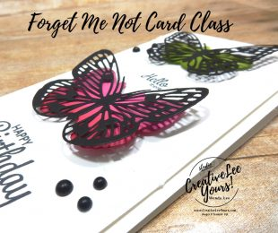 Blended Butterflies by wendy lee, Butterfly Brilliance stamp set, stampin up, stamping, SU, #creativeleeyours, creatively yours, creative-lee yours, #cardmaking, #handmadecard, #rubberstamps #stamping, friend, thinking of you, sympathy, thank you, birthday, love, anniversary, stamping, DIY, paper crafts, #papercrafting , #papercraftingsupplies, #papercraftingisfun , FMN, forget me not, ,#cardclub ,#cardclasses ,#onlinecardclasses , tutorial ,#tutorials , ,#funfoldcards ,#funfoldcard ,#makeacardsendacard ,#makeacardchangealife, #technique ,#techniques, embossing paste, brilliant wings, Here's a card stamp set, slimline card
