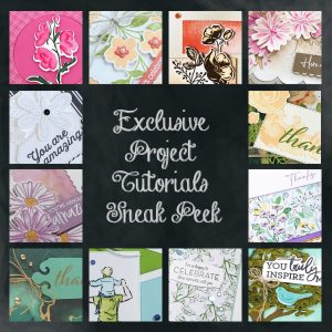 Exclusive Projects Tutorial Bundle, wendy lee, class, cards, exclusive, #creativeleeyours, creativelee-yours, creatively yours, pattern paper, rubber stamps, Stampin Up, hand made cards, technique, fun fold, 3D, gifts, birthday, thank you, appreciation, masculine, flowers, sympathy, kids, adults